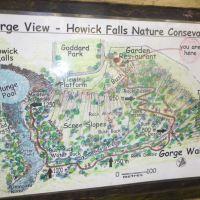 Howick Falls Gorge Walk