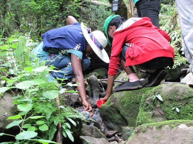 Drinking fresh water at Entabeni Hlatikulu RES.