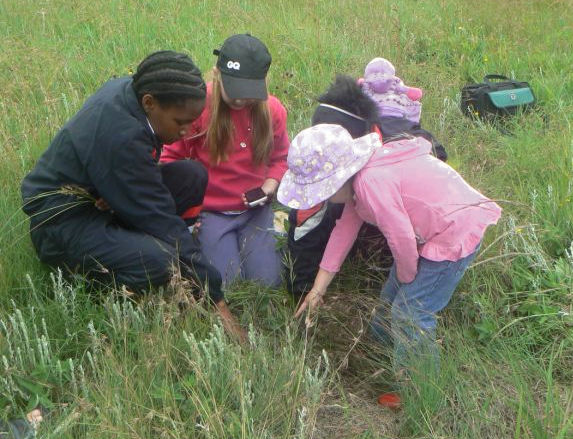 girls discover a caterpillar. crop.JPG