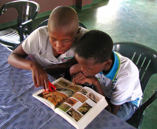 PHILANI AND MZWANDILE SNAKE BOOK Entabeni Hlatikulu RES