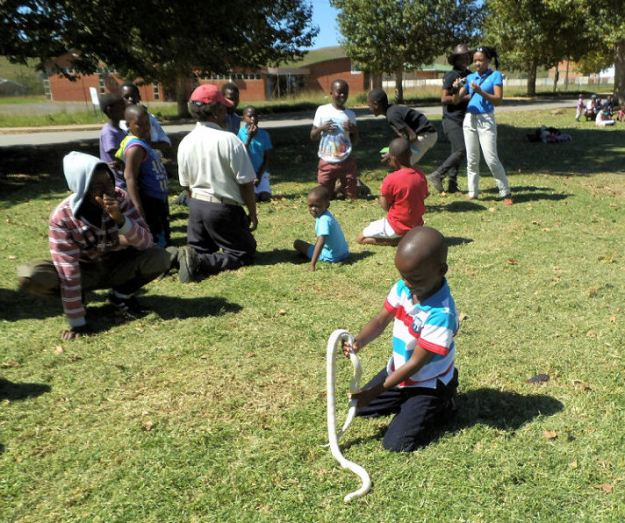 PS boy with corn snake in Mpop