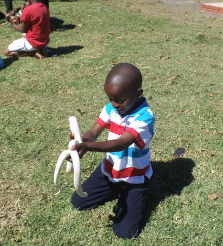 PS kids with snakes in mpop