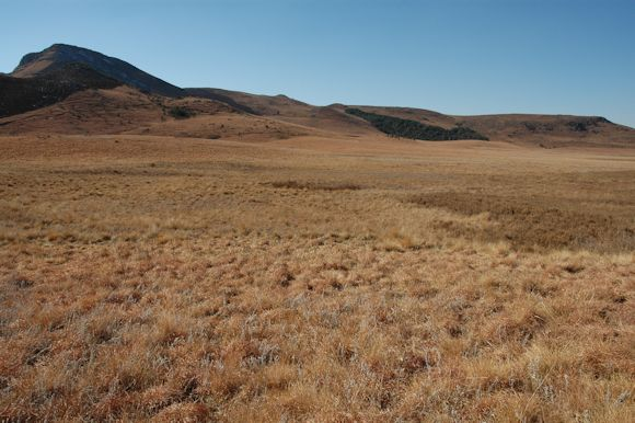 umgeni vlei in winter