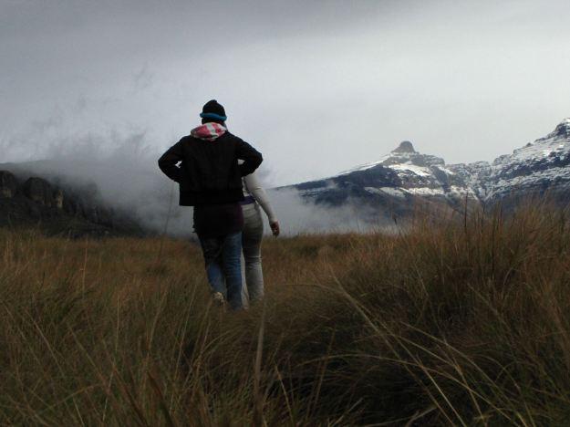 walking through grassland R