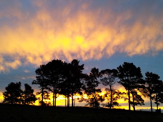 Sunset.res. jpg
