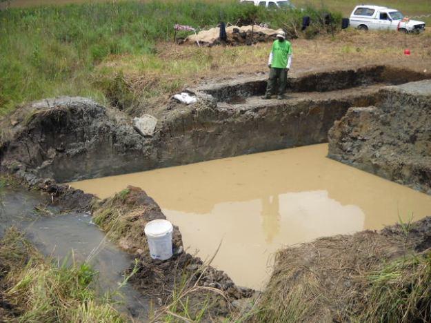 wetland rehab process