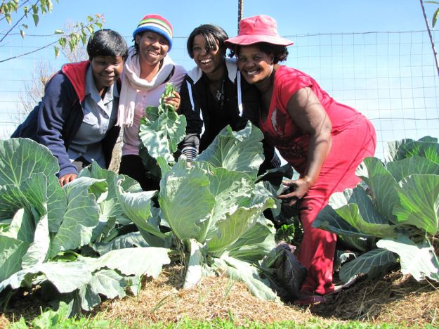 r mpophomeni girls with cabbages