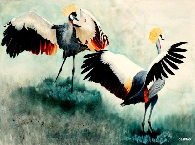 crowned crane dancing