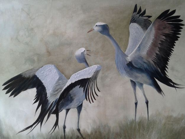 r blue cranes dancing