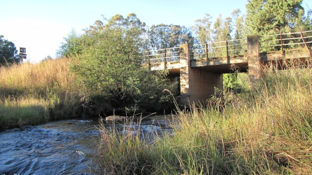 r Lion's River