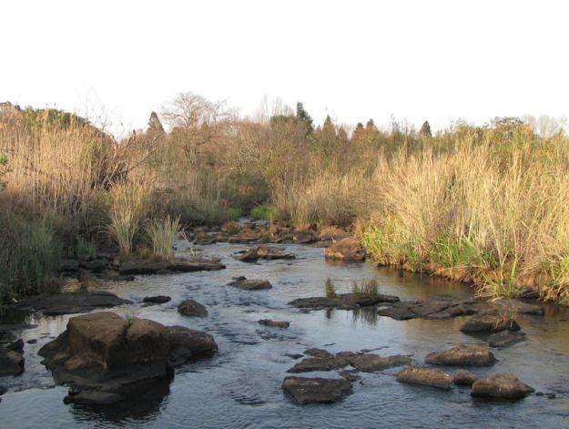 r umngeni river corrie lynn 005