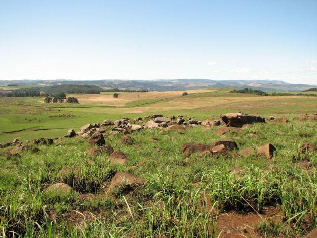 grassland spring.res