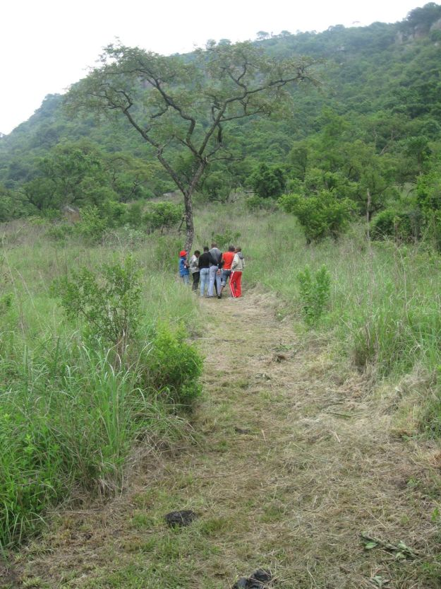r tree nkulu umgeni valley 098