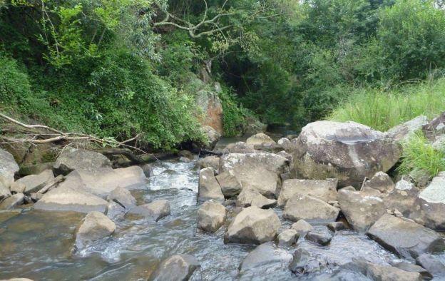 Dargle river on Howards