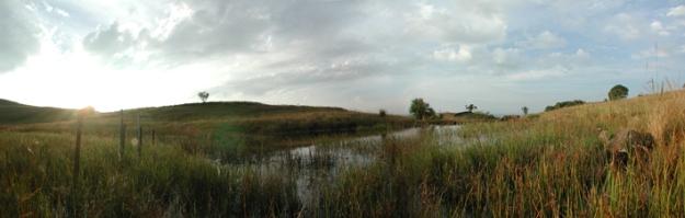 Bronner panorama WETLAND 4