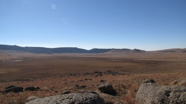 r umngeni vlei in winter 020