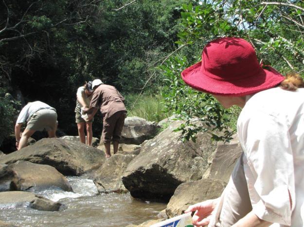 Dargle River Workshop 064