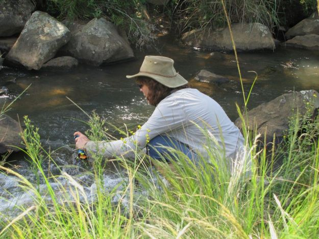 r Dargle River Workshop penny rees