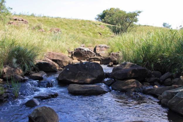 Water Workshop 019