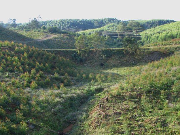 worlds view teteleku and plantation