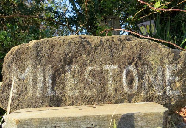 r milestone sign