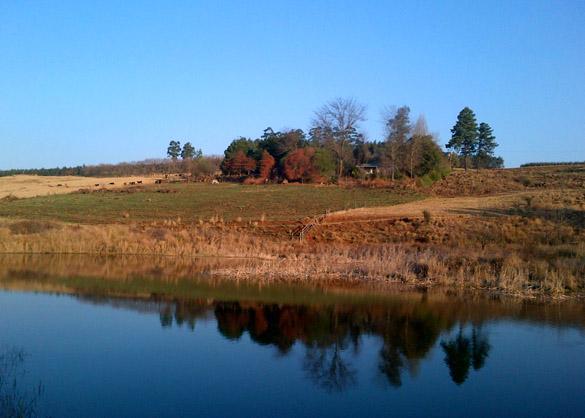 brandons cottage dam