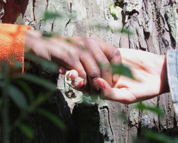 r hugging tree