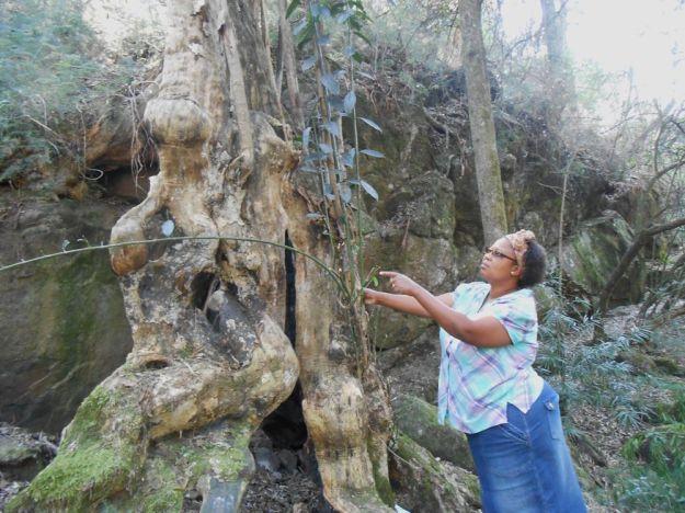 r Mpop khula shanti climate Sept 172 - Copy