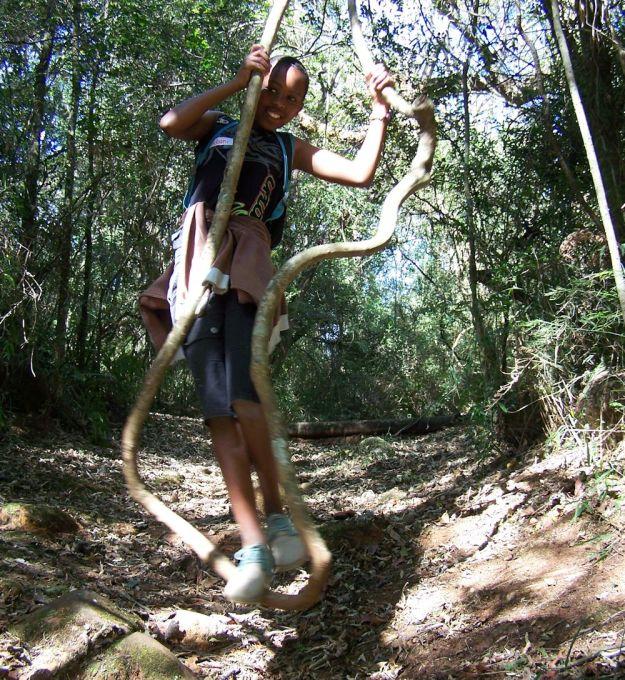 r swinginging on liana forest