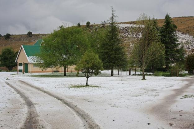 copperleigh hail