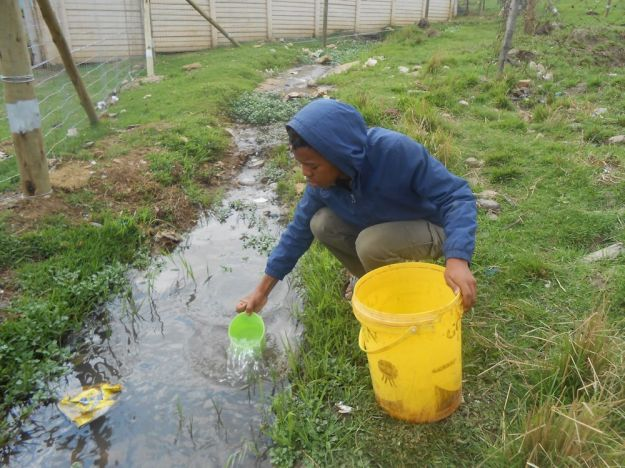 r mpop garden october collecting water