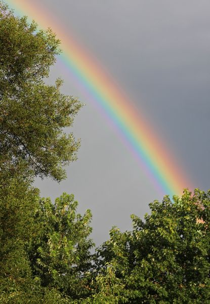 Brilliant rainbow after storm