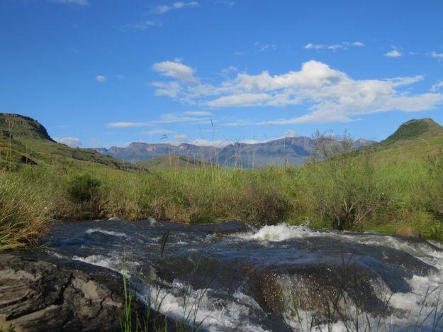 r snowflake bushmans river drakensbergJPG