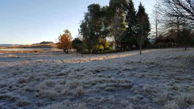 Frost in the sheep camp