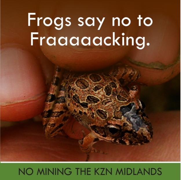 frack frog2