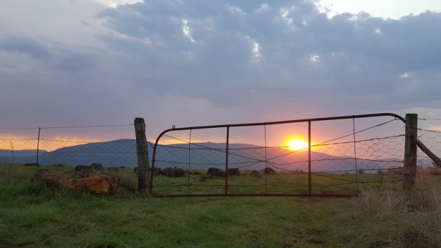 Old Farm Gate at Sunset