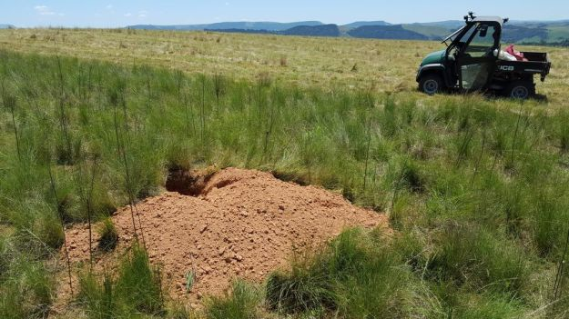 Massive Aardvark hole on the farm