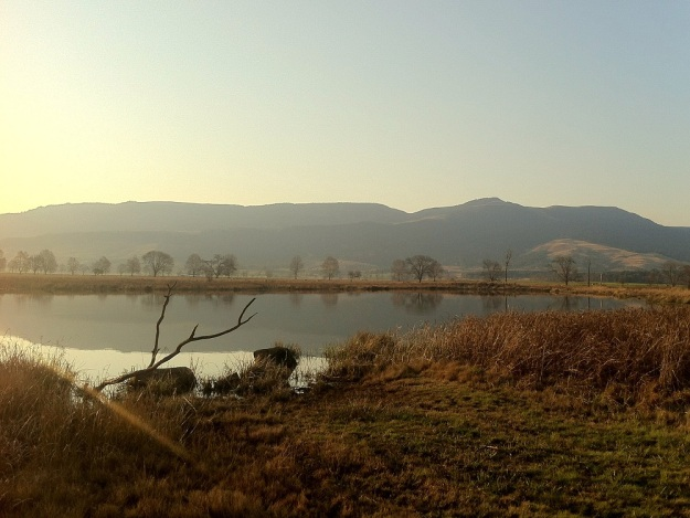 View from the Crowned Crane Hide in Winter