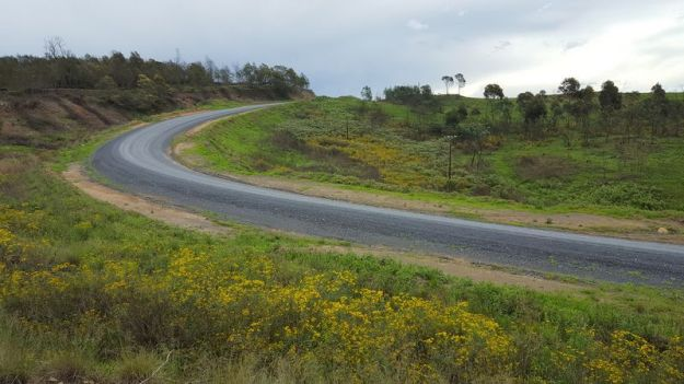 dargle-impendle-road-with-wattles-that-have-been-cut-by-working-for-water-2